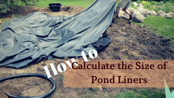 How to calculate the size of pond liners all around the for Koi pond liner calculator
