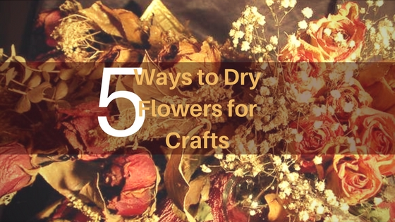 dry flowers are ideal for crafts, learn how to do them